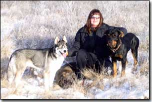 Husky-Isis, Briard-Artemis Rottweiler and Barbara in a field in winter